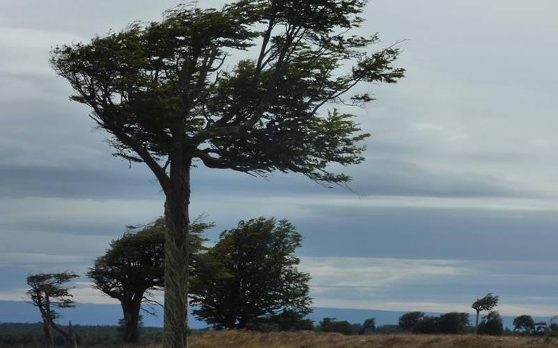 cicloturismo chile viento patagonia